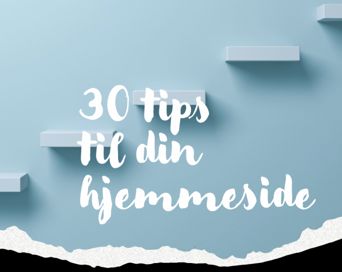 30 tips til din hjemmeside for 249 kr